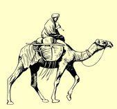 Bedouin on a camel — Stock Vector
