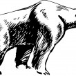 Vector de stock : Polar bear