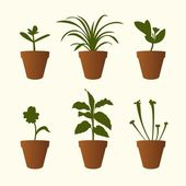 Plants in flowerpots — Stock Vector