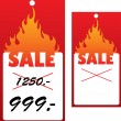 Stock Vector: Vector price tag with flame.