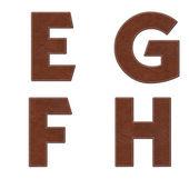 Alfabeto con puntada diseño de elementos de cuero — Foto de Stock