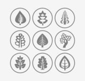 Trees icons on white background — Stock Vector