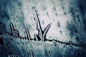 Inverno congelado textura — Foto Stock