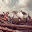 Cowboy and horse at summer sunset — Stock Photo #50967633
