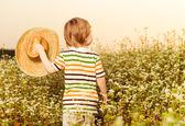 Boy with hat at buckwheat — Stock Photo