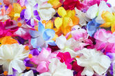 Multicolor Lei — Stock Photo