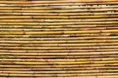 Bambus jalousien — Stockfoto