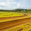 Asian Racetrack — Stock Photo
