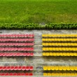 Red and Yellow Bleacher Seats — Stock Photo