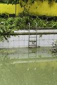 Dirty Swimming Pool — Stock Photo