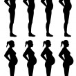 Stock Photo: Female Silhouette Stages of Pregnancy