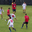 Soccer training of Catania Calcio — ストック写真