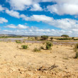 Stock Photo: Savanlandscape in Africa. Tsavo West, Kenya.