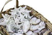 Closeup of braided straw basket full of starfish and shells, isolated on white. — Stock Photo