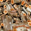 Stock Photo: Pile of wood logs ready for winter - landscape exterior