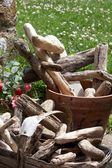 Drift wood — Stock Photo