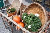 Blommor i en vagn — Stockfoto