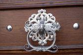 An ornate door knocker — Stock Photo