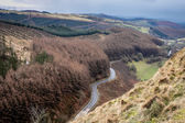 A view of a winding road up the Sugar Loaf Mountain — Stock Photo