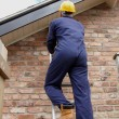 Workman up a ladder — Stock Photo