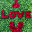Word of love made from red rose petals on green grass field — Stock Photo #19683097