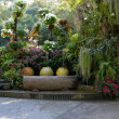 Stock Photo: Beautiful backyard garden park scene