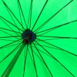 Green color umbrella — Stock Photo