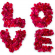 Word of love made from red rose petals isolated on white — Stock Photo
