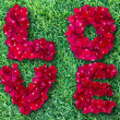 Word of love made from red rose petals on green grass field — Stock Photo #19683701