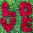 Word of love made from red rose petals on green grass field — Stock Photo