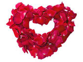 Heart shape of red rose petals isolated on white — Stock Photo