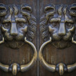 Vintage oriental knocker door of metal lion — Stock Photo