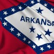 Arkansas Flag — Stock Photo