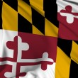 Maryland Flag — Stock Photo