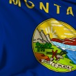 Montana flag — Stock Photo