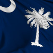 South Carolina flag — Stock Photo