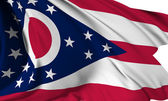 Ohio flag — Stock Photo
