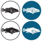 The figure shows the grouper fish — Stock Vector