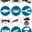 Depicted in Figure Seafood — Stock Vector