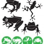 Frog — Stock Vector #19046941