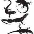 Lizard - Imagens vectoriais em stock