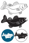 Fish bass — Stock Vector