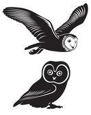 De figuur toont een owll — Stockvector