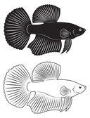 オンドリの魚 — ストックベクタ