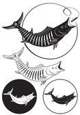 Obraz pokazuje makrela — Wektor stockowy