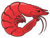 The figure shows a shrimp — Stock Vector