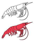 该图显示了一个国王虾 — 图库矢量图片