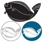 The figure shows the fish halibut — Stock Vector