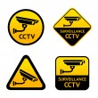 Stock Vector: Video surveillance, set stickers