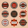 Racing labels - vintage style — Stock Vector #22833054